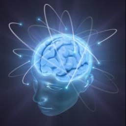 creier1