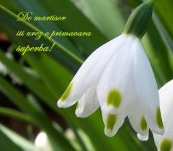 - Primavara sa-ti inmiresmeze inima si sufletul cu parfumul florilor ei neasemuite si sa-ti arate ce-nseamna sa zambesti, sa iubesti si sa fii iubit/a cu adevarat !